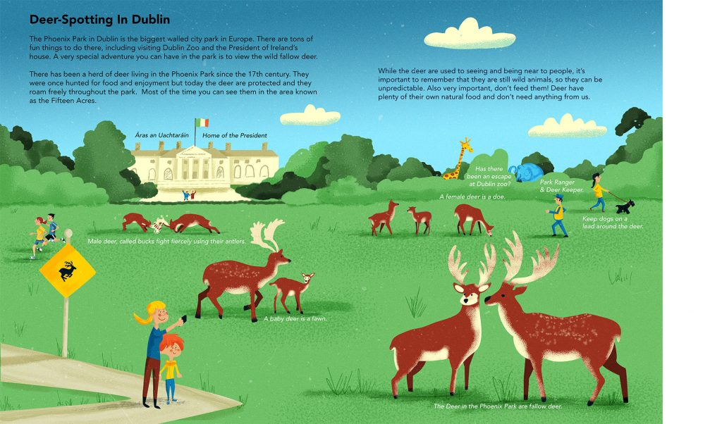 Phoenix Park Dublin Deer Illustrated By Jennifer Farley
