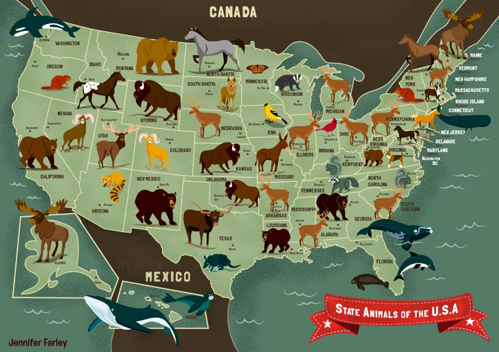 State Animals of the USA - Jennifer Farley