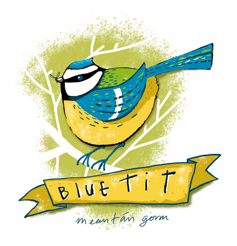 Garden bird series - Bluetit