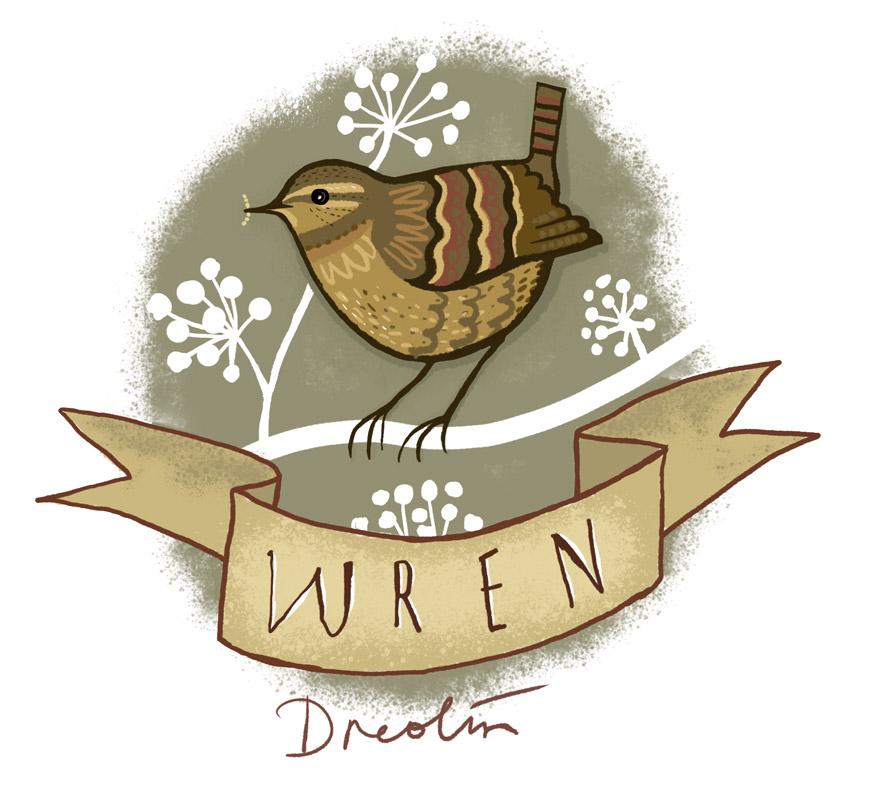 Garden bird series - Wren