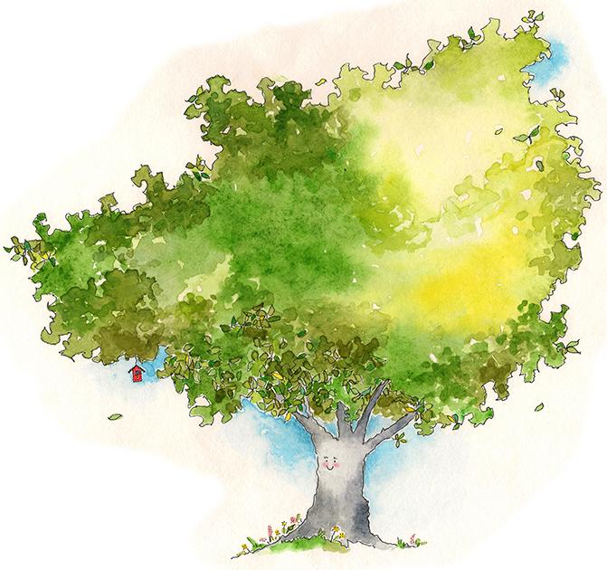 Ash, the tree