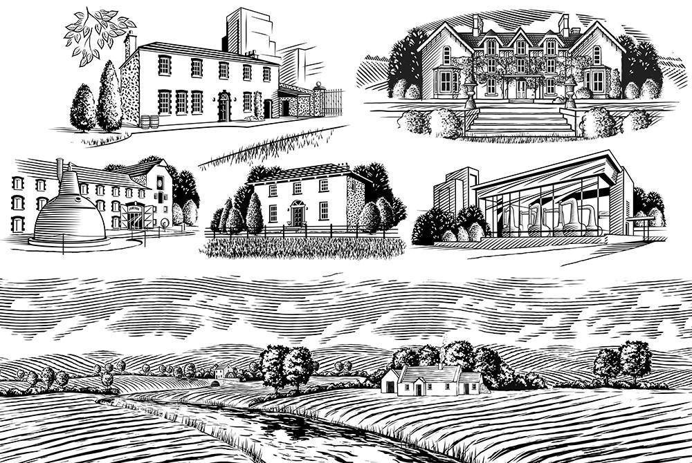 Variety of B/W vector illustrations