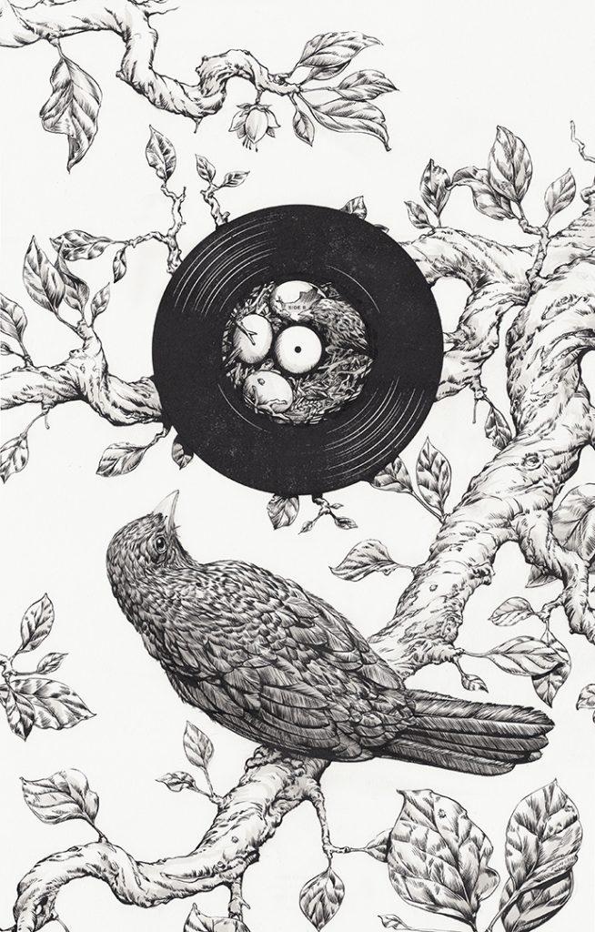 Blackbird-Sam-Hadley