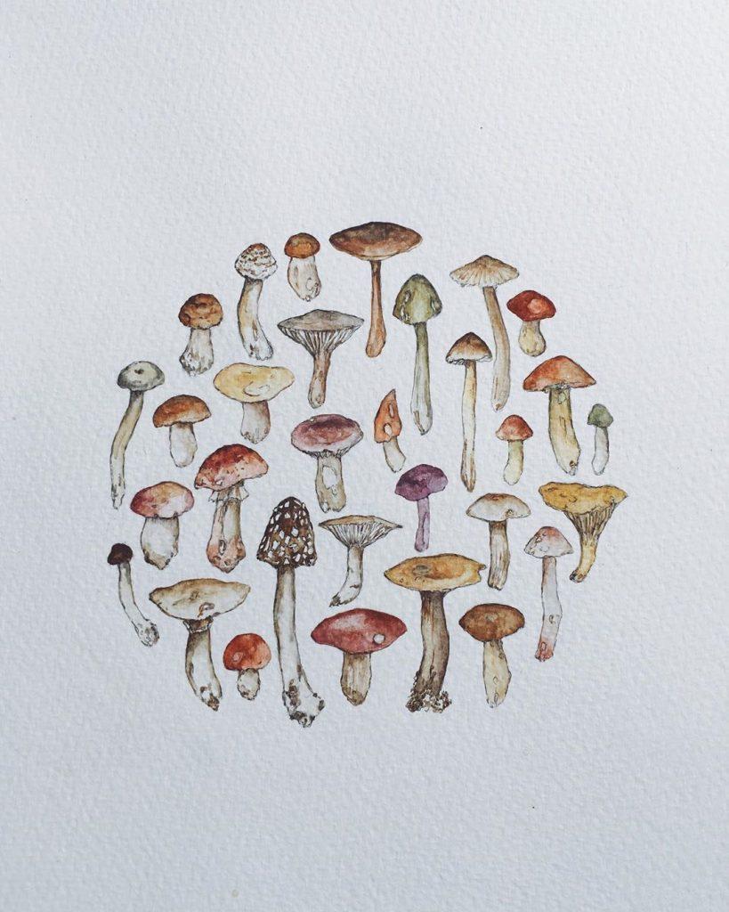 1.-Mushroom-Miniatures