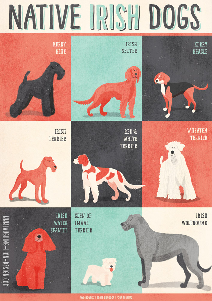 Dogs of Ireland poster Jennifer Farley