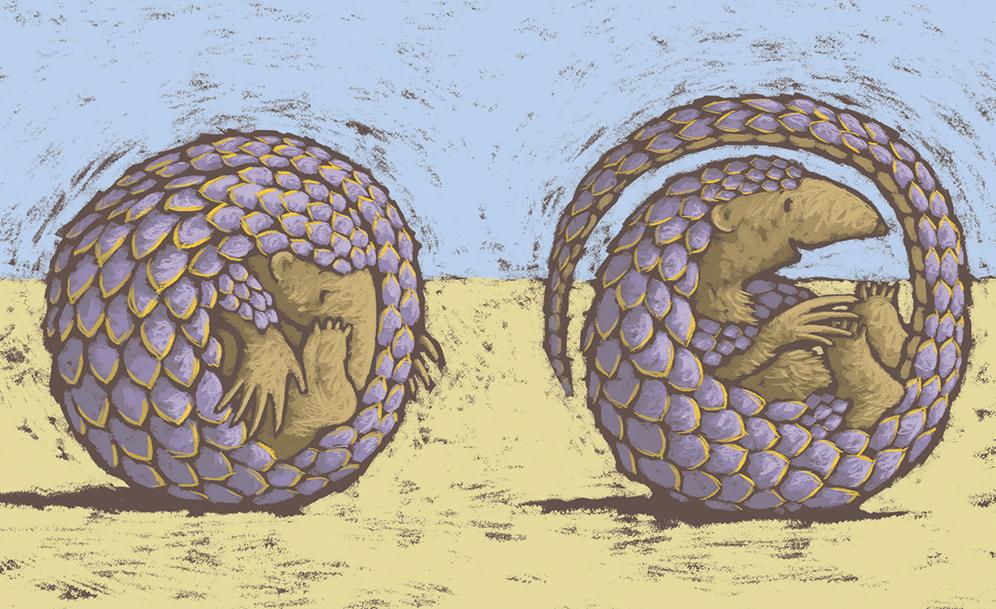 Pangolin-unrolls