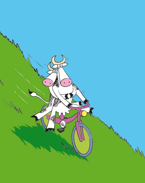 Ambrosia Cows_1