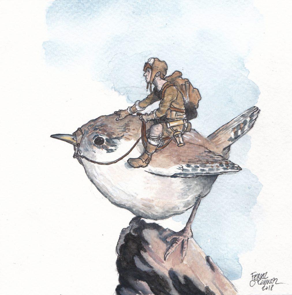 Adventurer upon bird.