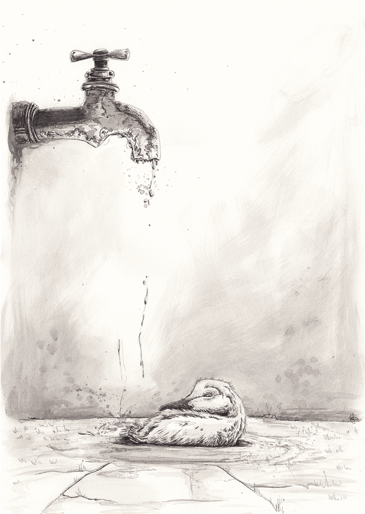 Drained_Helena_Grimes_2017