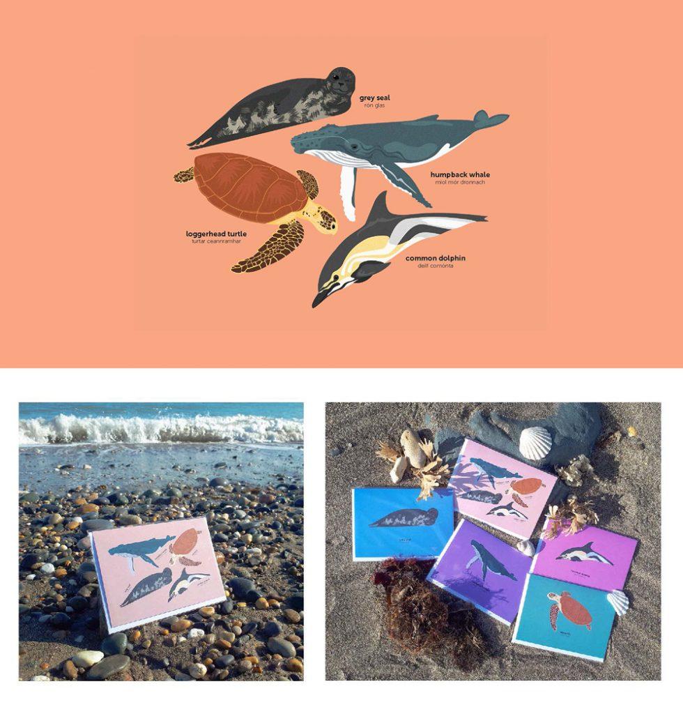 Irish Sea Life Cards