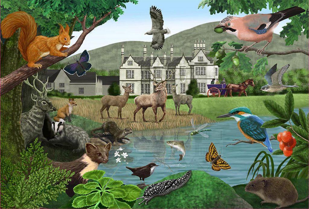 W.Helps-Killarney-puzzle-artwork