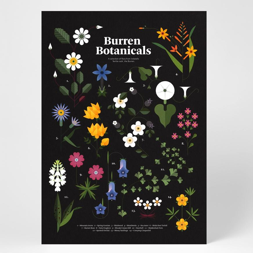 1_Burren_Botanicals