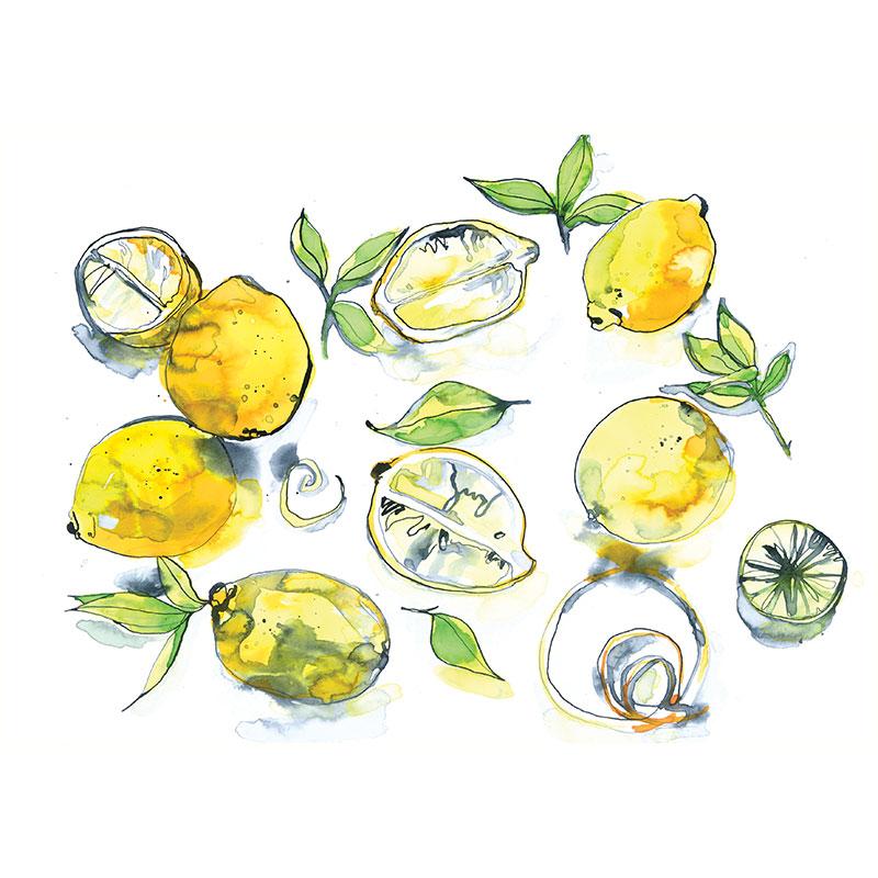 Eva Kelly Lemons Watercolour