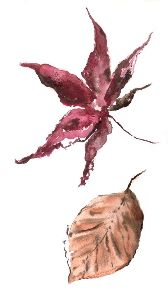 Louise-Naughton-Illustration-Autumn-Leaves-2